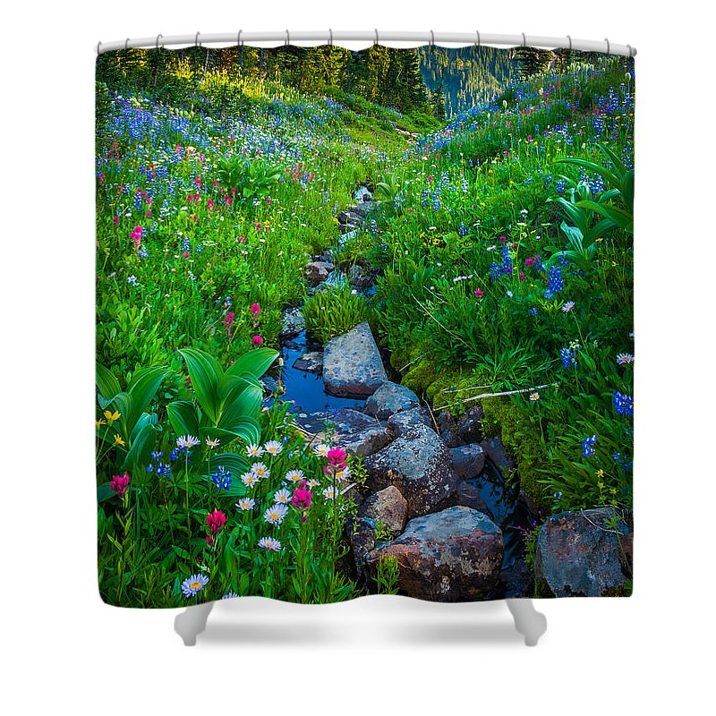 America Shower Curtain featuring the photograph Summer Creek by Inge Johnsson