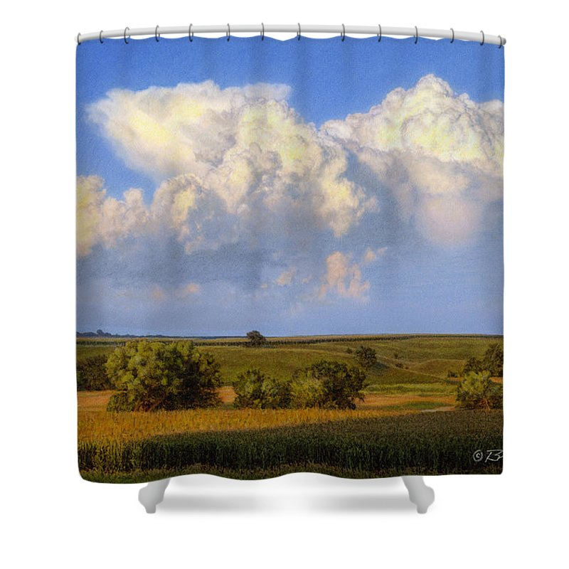 Landscape Shower Curtain featuring the drawing Summer Evening Formations by Bruce Morrison
