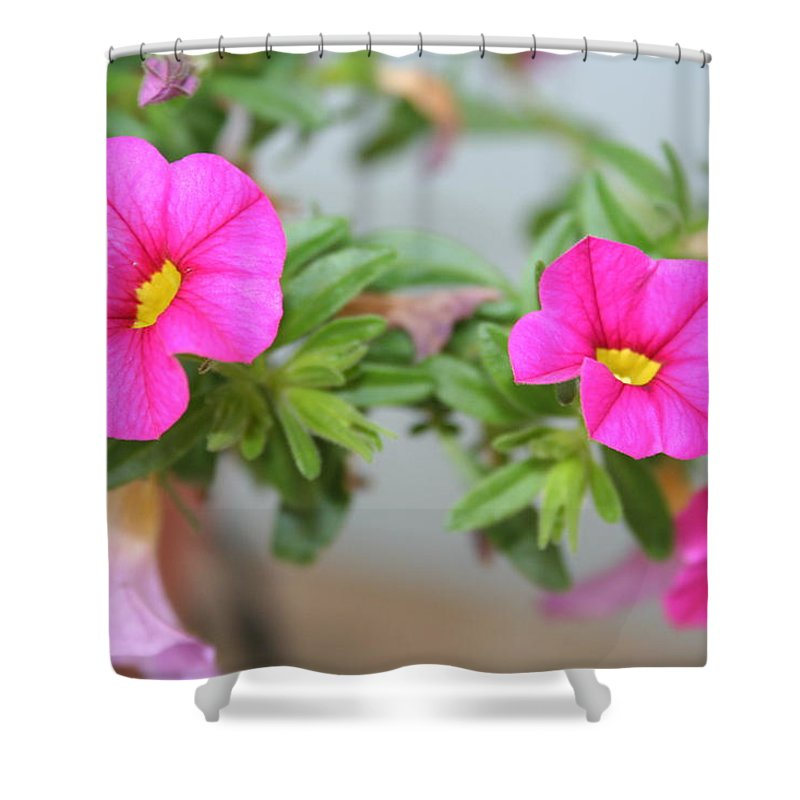 Flowers Shower Curtain featuring the photograph Summer Flowers by Linda Sannuti