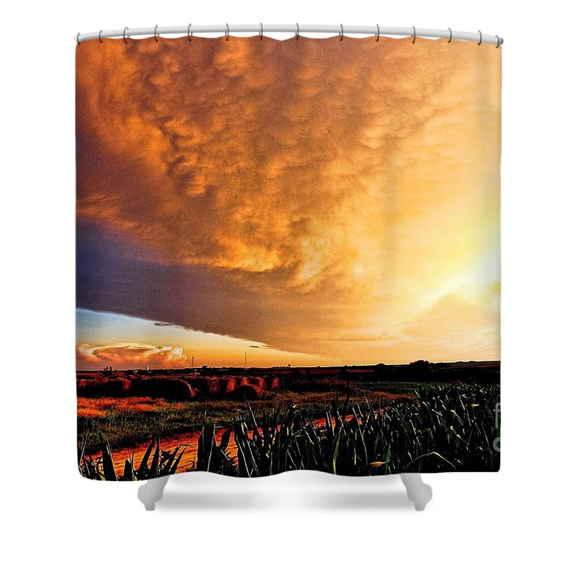Summer Shower Curtain featuring the photograph Summer Glory by Marty Kugler