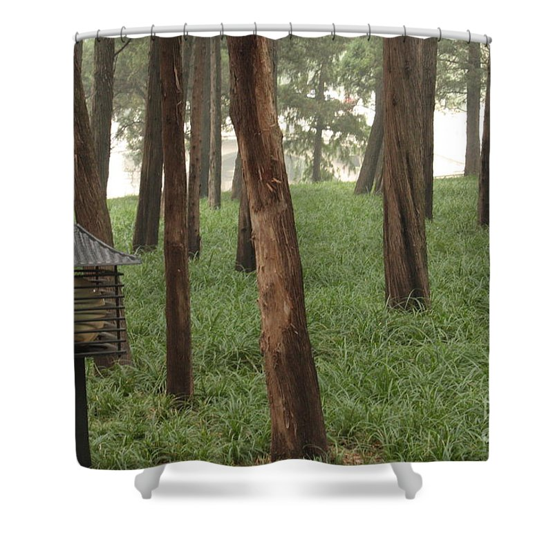 Summer Palace Shower Curtain featuring the photograph Summer Palace Trees And Lamp by Carol Groenen