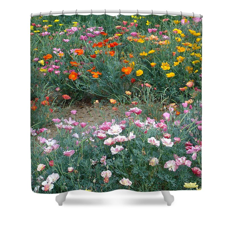 Flower Shower Curtain featuring the photograph Summer poppy meadow by Susan Baker