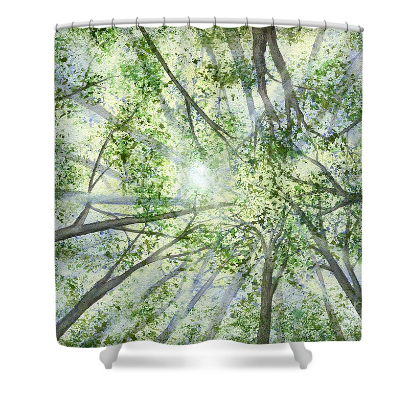 Trees Shower Curtain featuring the painting Summer Rays by Lynn Quinn
