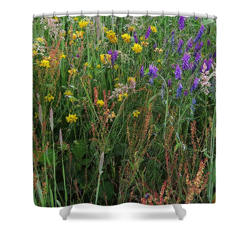 Wildflowers Shower Curtain featuring the photograph Summer Scents by I'ina Van Lawick