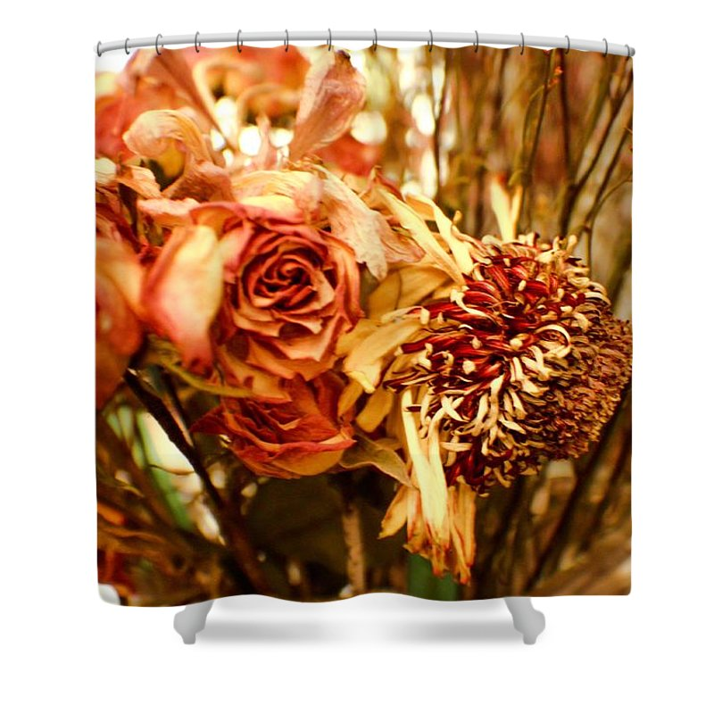 Sunflower Shower Curtain featuring the photograph Sun And Rose by Kendall Tabor