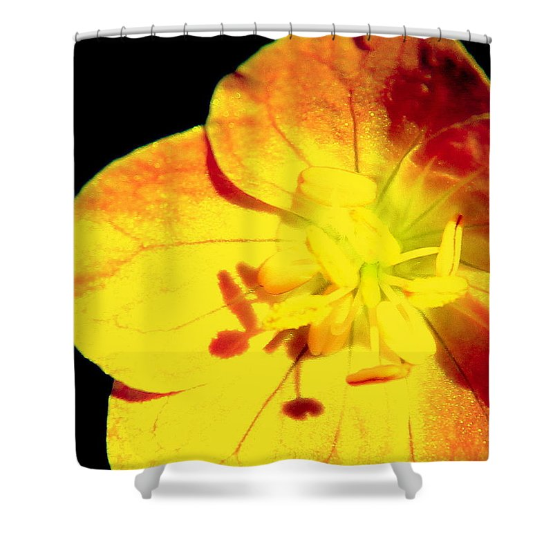 Sun Burn Shower Curtain featuring the photograph Sun Burn by Ed Smith