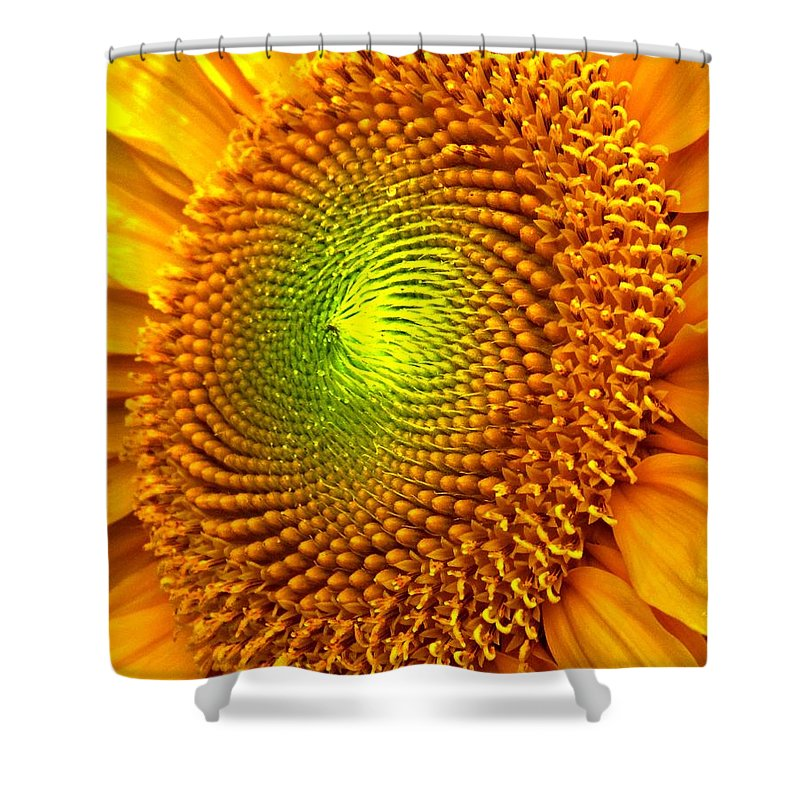 Sun Shower Curtain featuring the photograph Sun Burst by Ian MacDonald