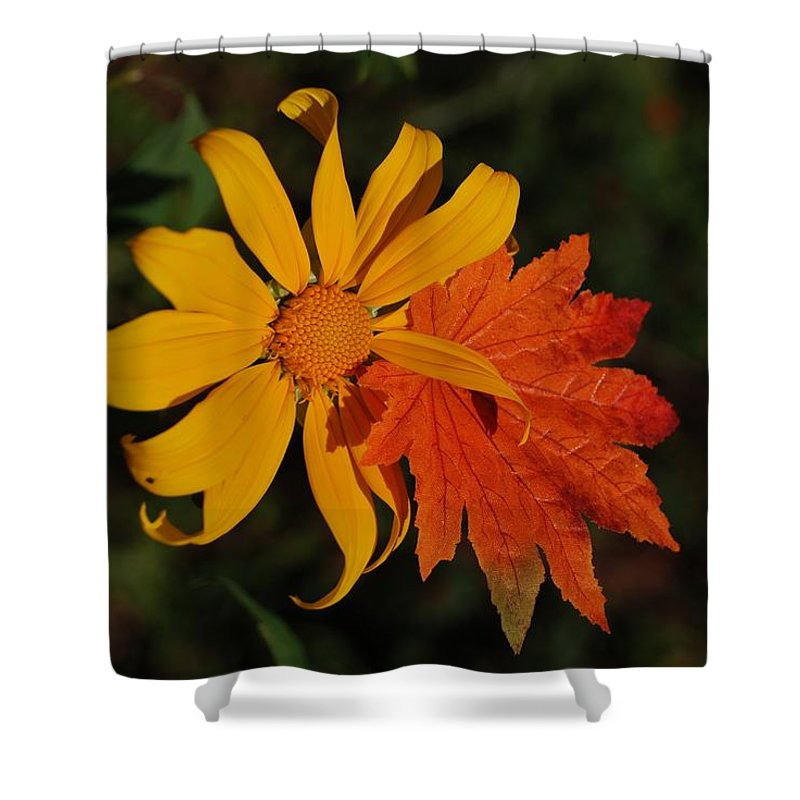 Pop Art Shower Curtain featuring the photograph Sun Flower And Leaf by Rob Hans