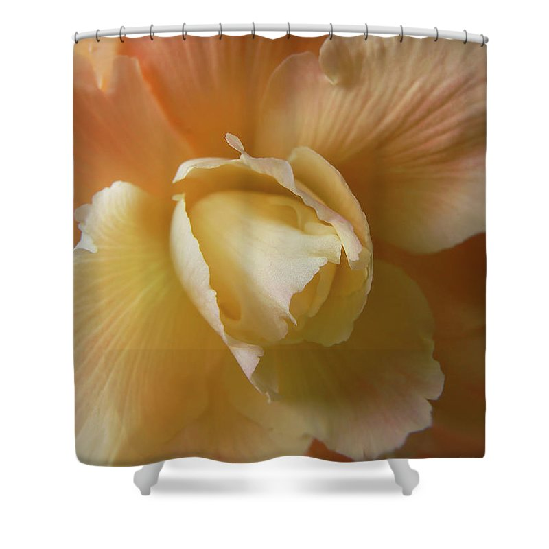 Begonia Shower Curtain featuring the photograph Sun Kissed Begonia Flower by Jennie Marie Schell
