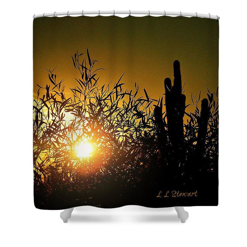 Arizona Shower Curtain featuring the photograph Sun Shining by L L Stewart
