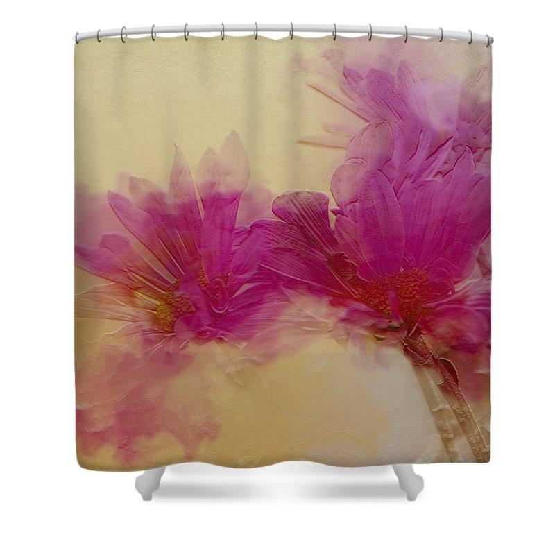Flowers Shower Curtain featuring the photograph Sundance by Linda Sannuti
