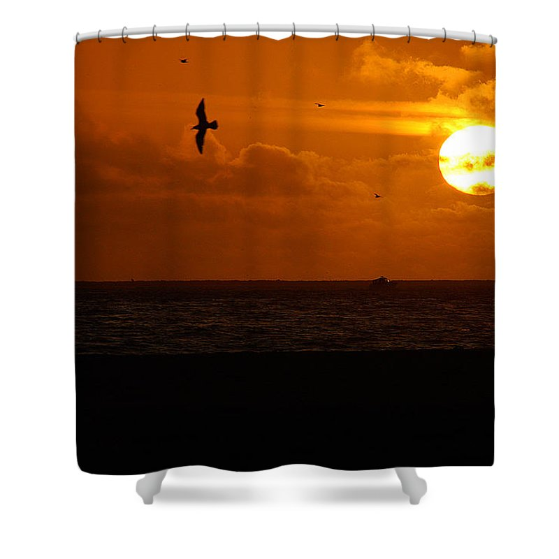 Clay Shower Curtain featuring the photograph Sundown Flight by Clayton Bruster