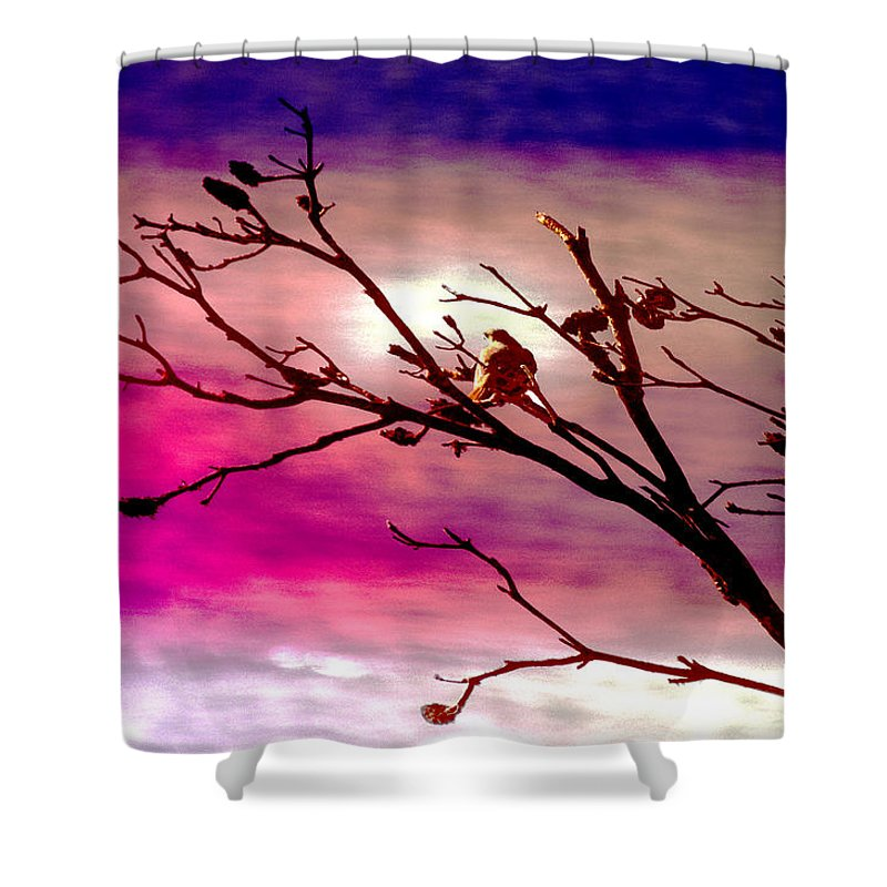 Landscape Shower Curtain featuring the photograph Sundown by Holly Kempe