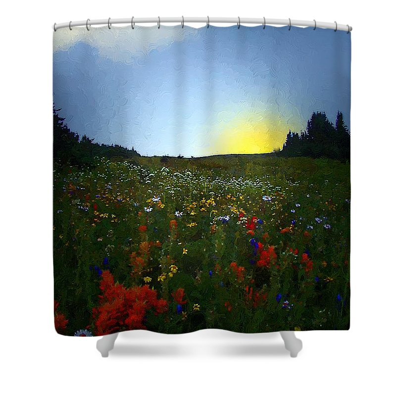 Flowers Shower Curtain featuring the painting Sundown Wildflower Meadow by RC DeWinter