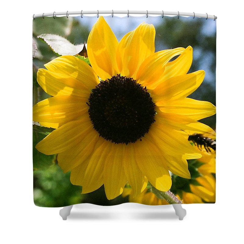 Flower Shower Curtain featuring the photograph Sunflower With Bee by Dean Triolo