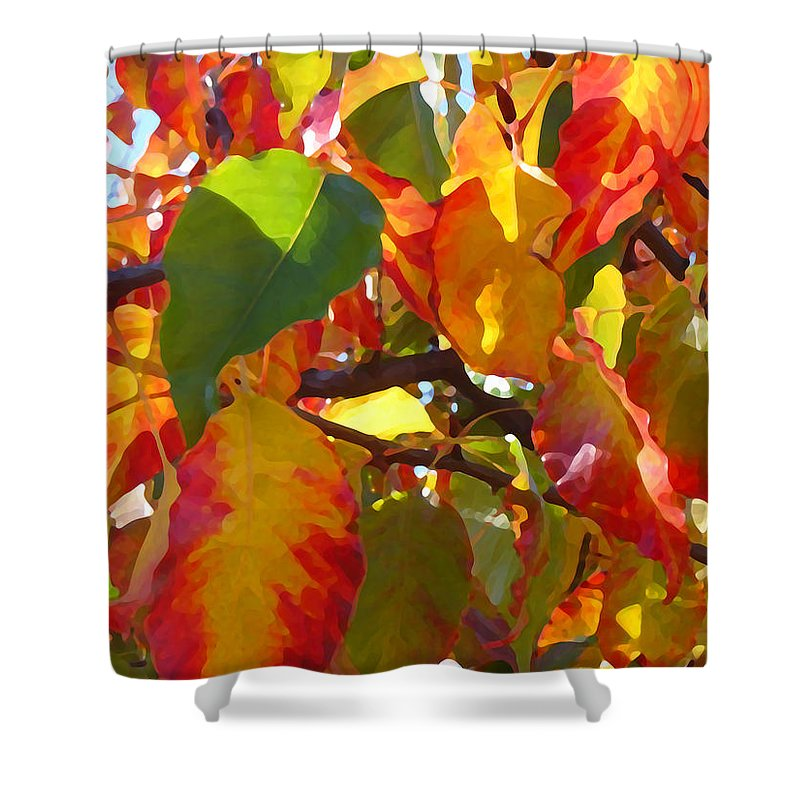 Fall Leaves Shower Curtain featuring the photograph Sunlit Fall Leaves by Amy Vangsgard
