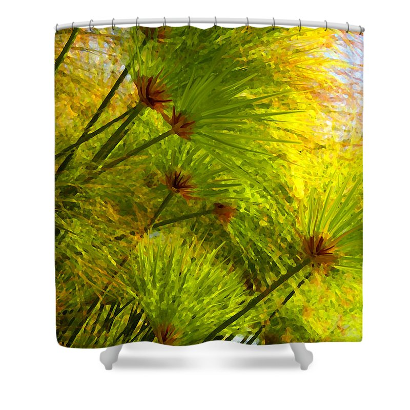 Landscape Shower Curtain featuring the painting Sunlit Paparus by Amy Vangsgard