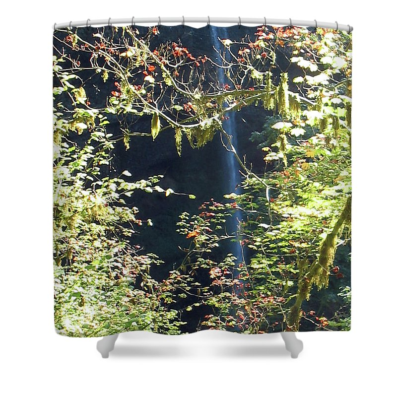 Landscape Shower Curtain featuring the photograph Sunlite Silver Falls by Thomas J Herring