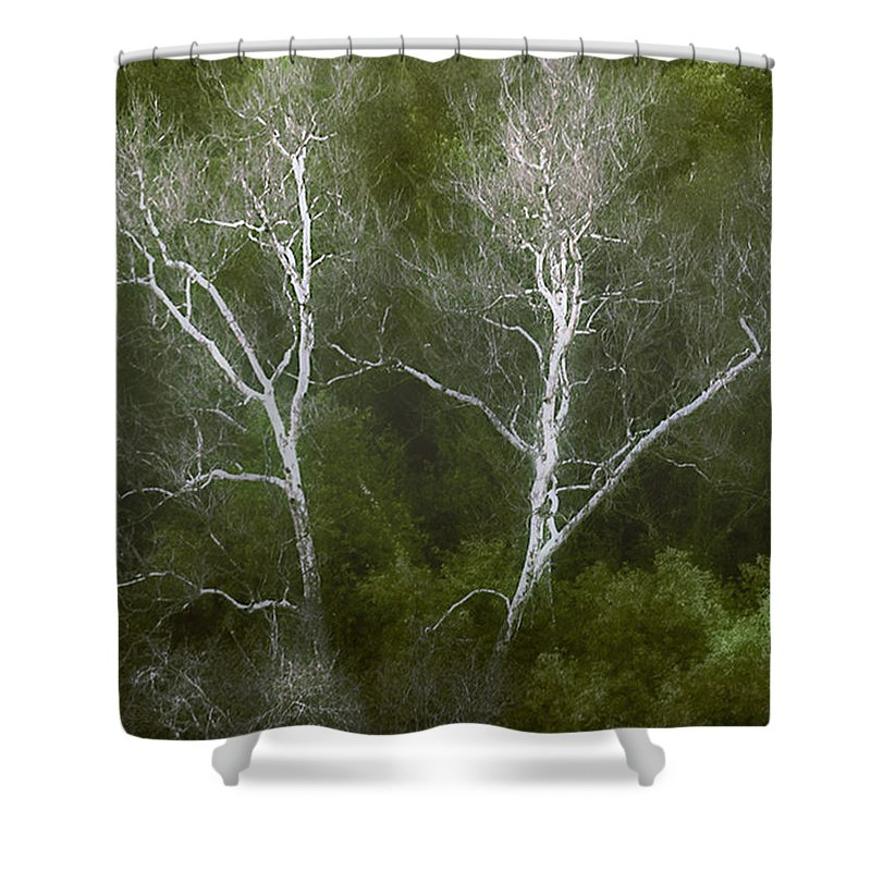 Landscape Shower Curtain featuring the photograph Sunol - Twins by Karen W Meyer