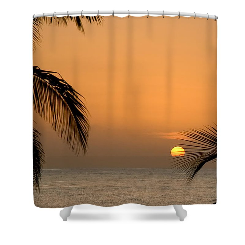 Sunrise Shower Curtain featuring the photograph Sunrise And Palms by Mick Burkey