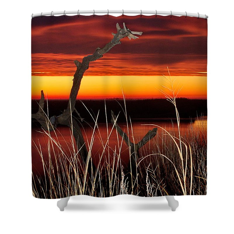 Sunrise Shower Curtain featuring the photograph Sunrise On The Marsh by Benjamin Hoffman
