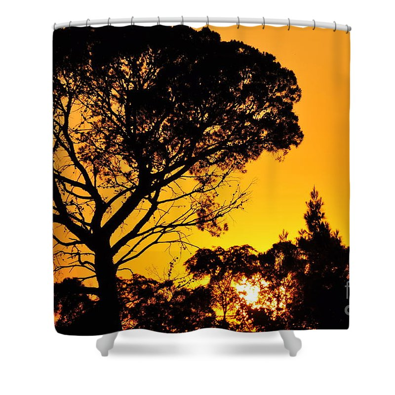 Clay Shower Curtain featuring the photograph Sunset In Tujunga by Clayton Bruster