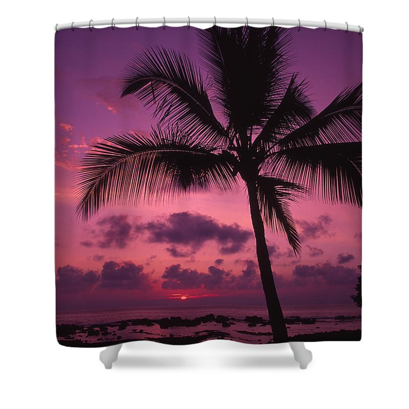 Bright Shower Curtain featuring the photograph Sunset Palms by Ron Dahlquist - Printscapes