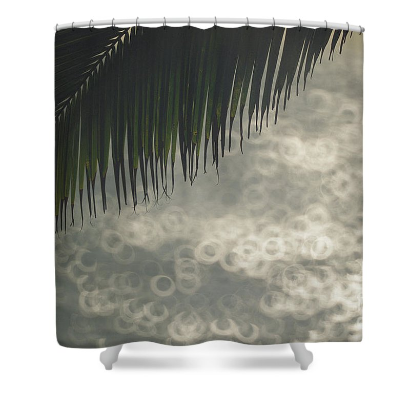 Afternoon Shower Curtain featuring the photograph Sunset Scene by Vince Cavataio - Printscapes