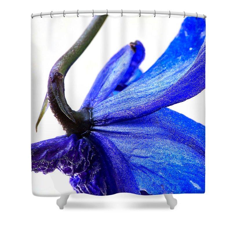 Lauren Radke Shower Curtain featuring the photograph Surrender by Lauren Radke