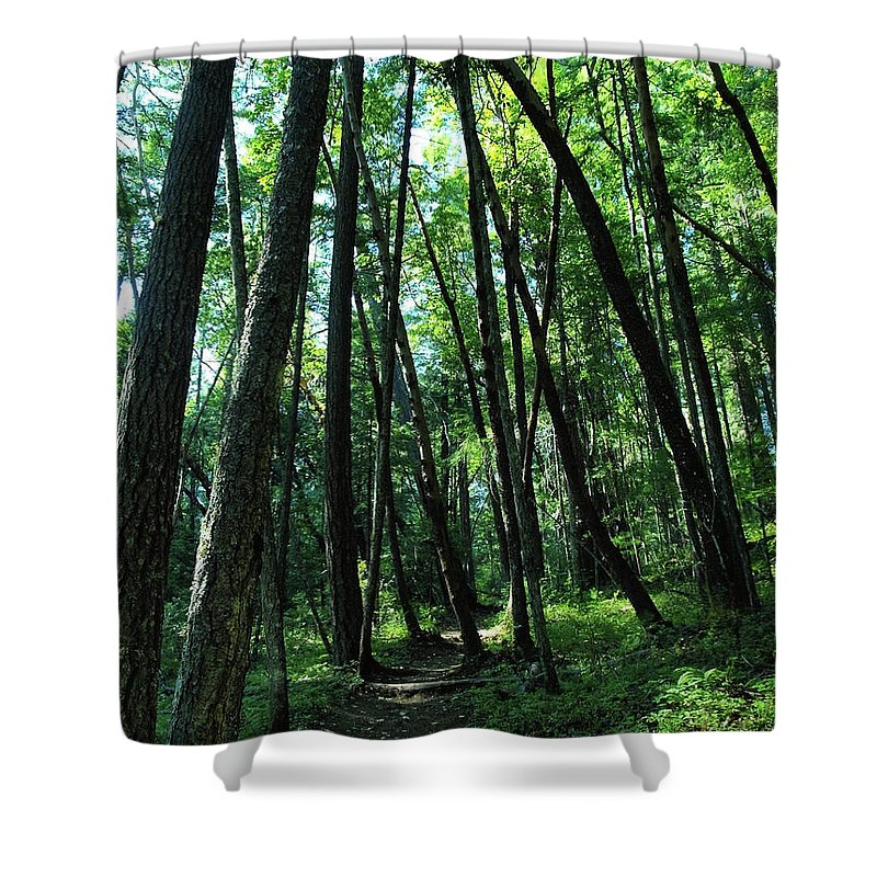 Green Shower Curtain featuring the photograph Susan Creek Indian Mound Trail by Teri Schuster