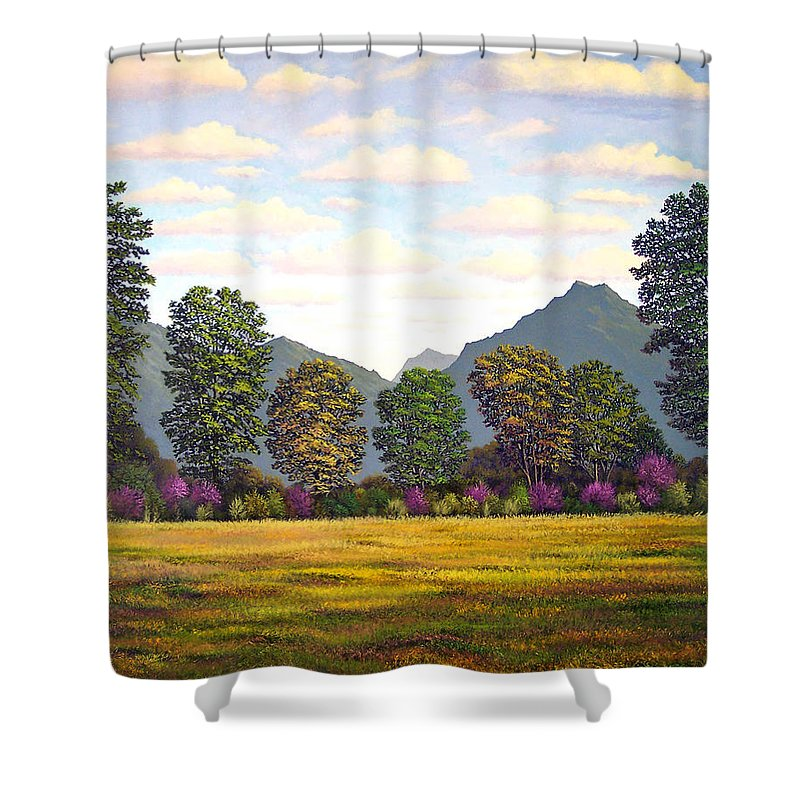 Mountains Shower Curtain featuring the painting Sutter Buttes In Springtime by Frank Wilson