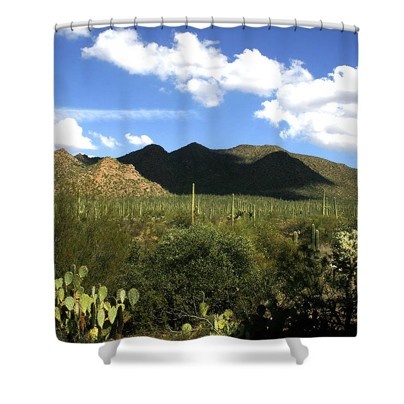 Saguaro Shower Curtain featuring the photograph Sw194 Southwest by James D Waller