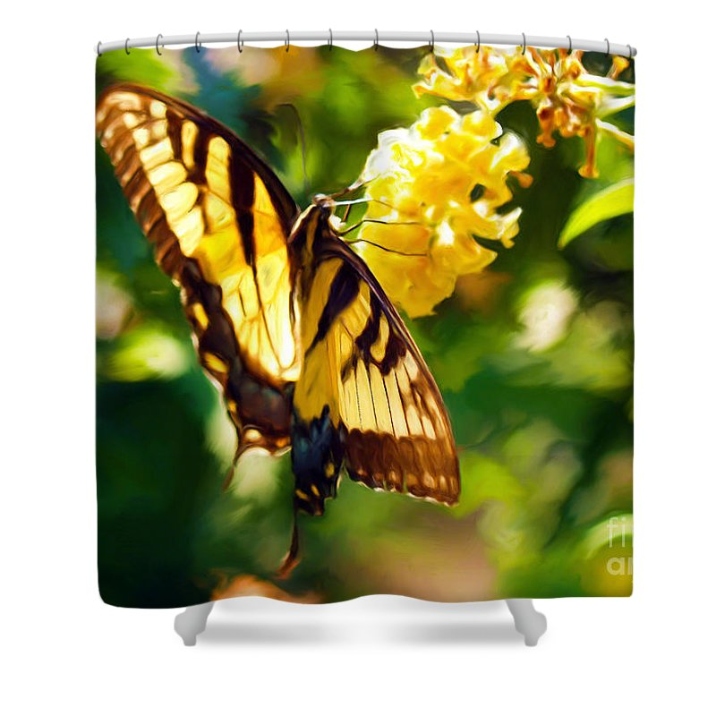 Butterfly Painting Shower Curtain featuring the painting Swallowtail by Patricia Griffin Brett