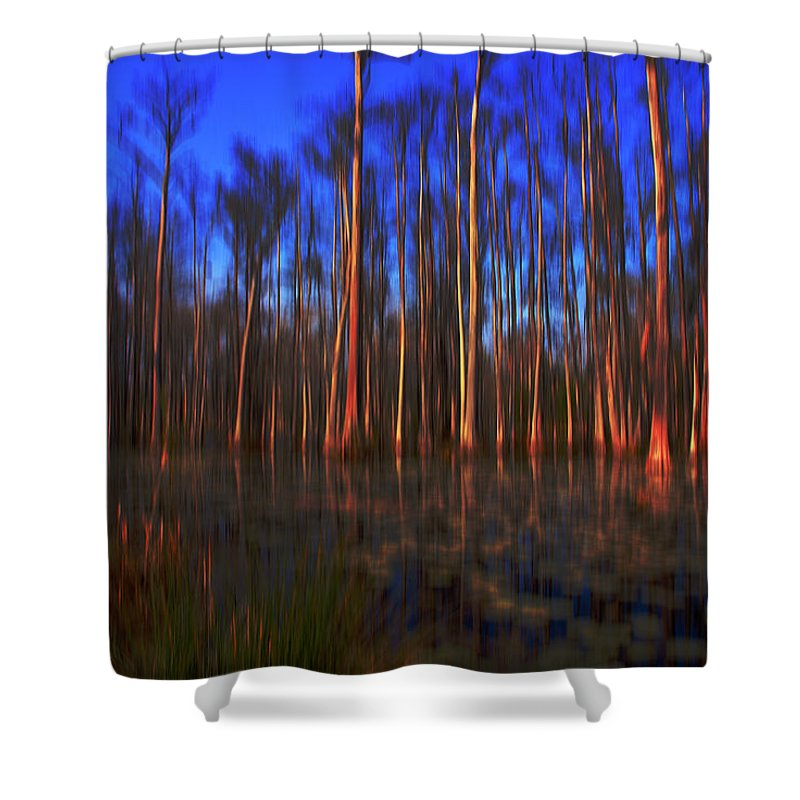 Swamp Shower Curtain featuring the photograph Swamp In Cypress Gardens by Susanne Van Hulst