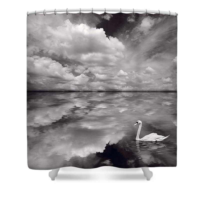 Bird Shower Curtain featuring the photograph Swan Lake Explorations B W by Steve Gadomski