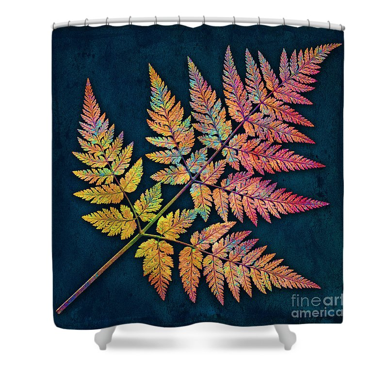 Leaf Shower Curtain featuring the photograph Sweet Cicely by Digital Crafts