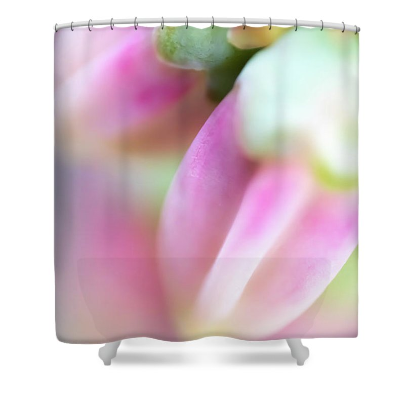 Abstract Shower Curtain featuring the photograph Sweet by Ilka B