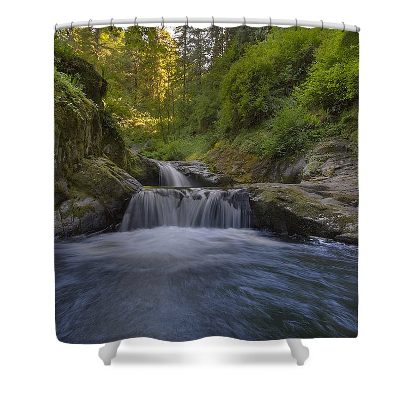 Sweet Creek Falls Trail Complex Shower Curtain featuring the photograph Sweet Little Waterfall by David Gn
