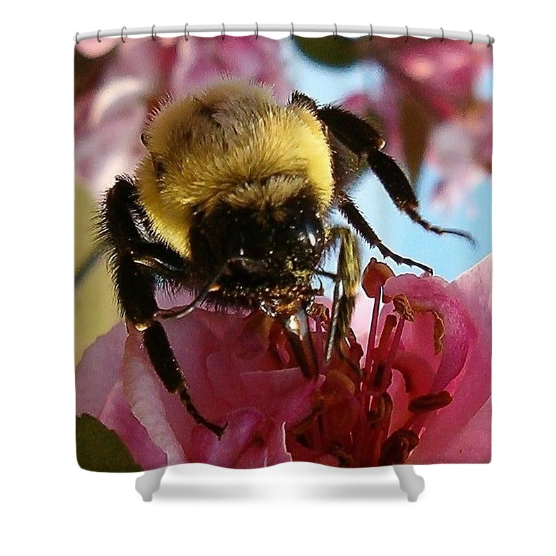 Bee Shower Curtain featuring the photograph Sweet Nectar by Sara Raber
