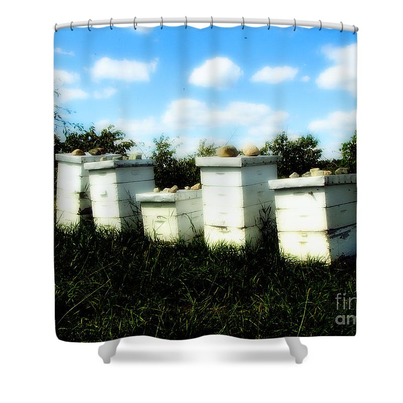 Honey Shower Curtain featuring the photograph Sweetened Nature by September Stone
