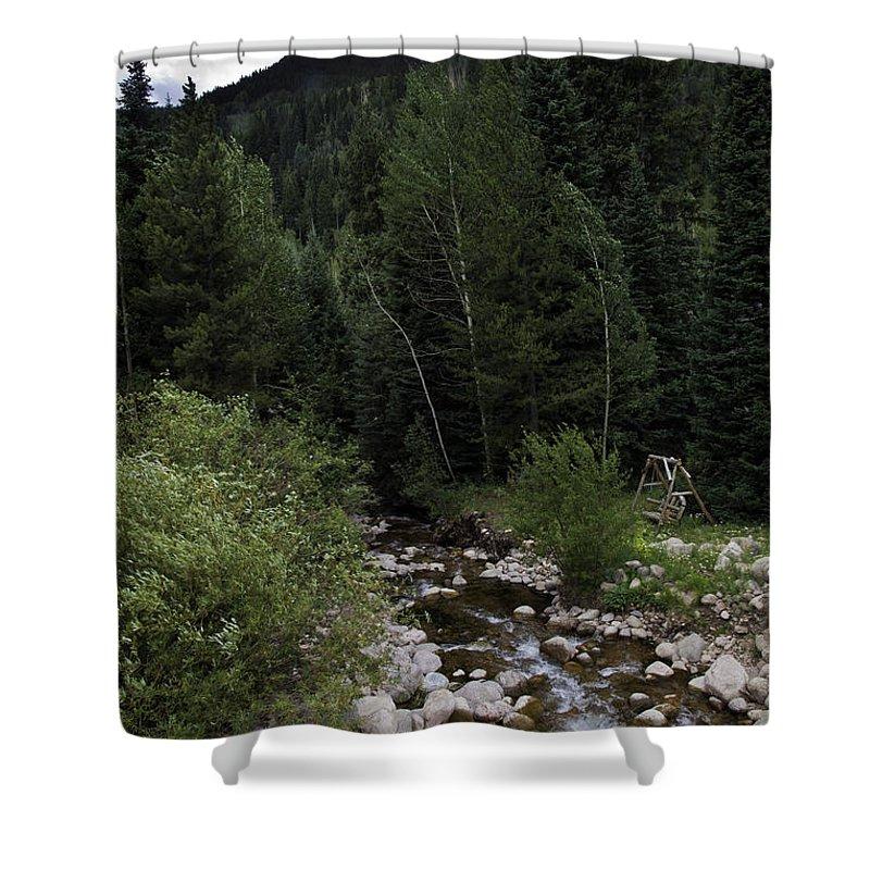Stream Shower Curtain featuring the photograph Swing By The Vail Stream by Madeline Ellis