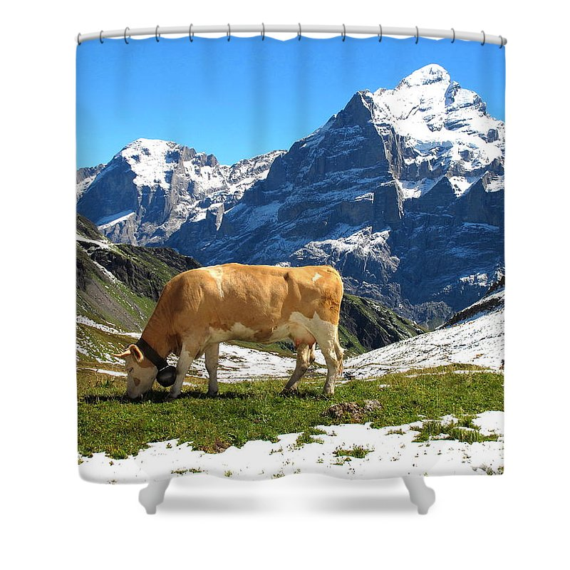 Switzerland Shower Curtain featuring the photograph Swiss Scene by Mary Ellen Mueller Legault