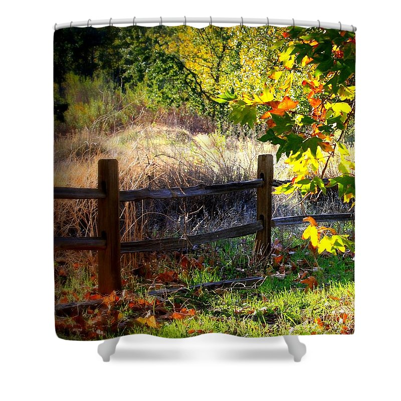 Fence Shower Curtain featuring the photograph Sycamore Grove Fence 1 by Carol Groenen