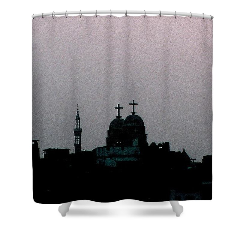 Cityscape Shower Curtain featuring the photograph Symbiosis by Dragica Micki Fortuna