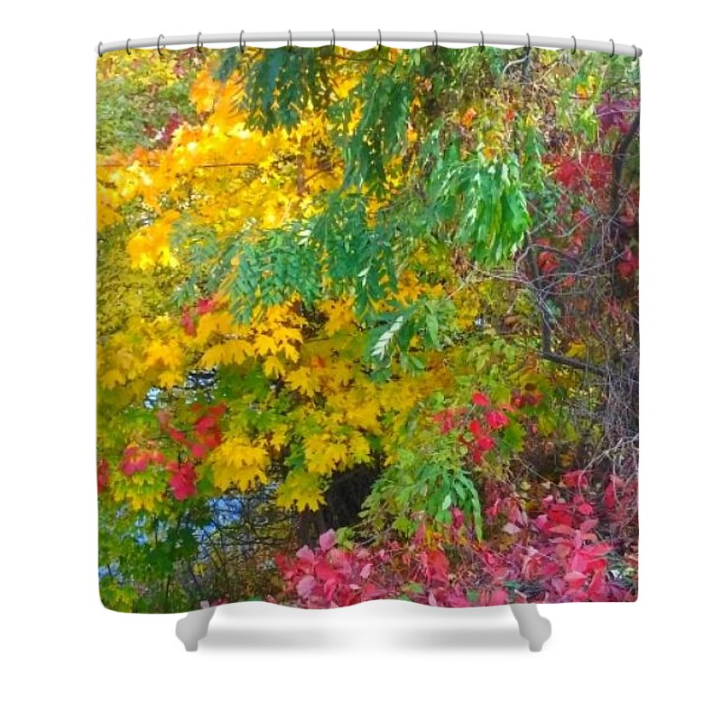 Canvas Shower Curtain featuring the photograph Synergistic Horizons by Alexandra Felecan
