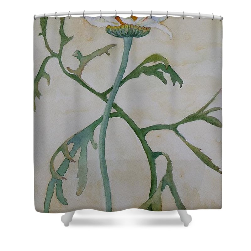 Flower Shower Curtain featuring the painting Tanacetum by Ruth Kamenev