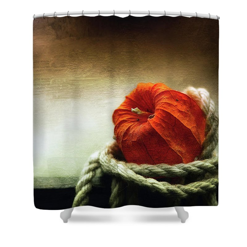 Art Shower Curtain featuring the photograph Tangled Season by Dragos Dumitrascu