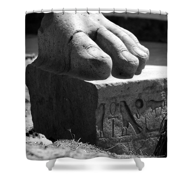 Tanis Shower Curtain featuring the photograph Tanis Foot by Donna Corless