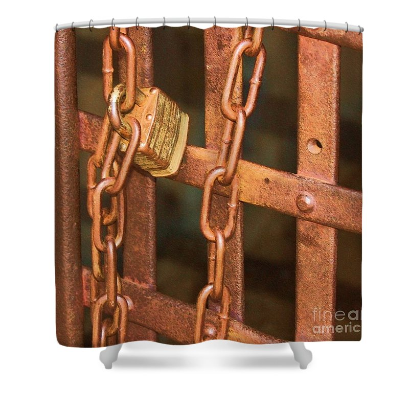 Metal Shower Curtain featuring the photograph Tarnished Image by Debbi Granruth