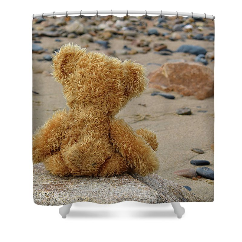 Beach Shower Curtain featuring the photograph Teddy On A Beach by Ludmila SHUMILOVA